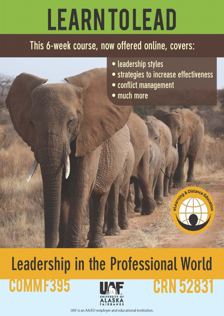 leadership in the professional world
