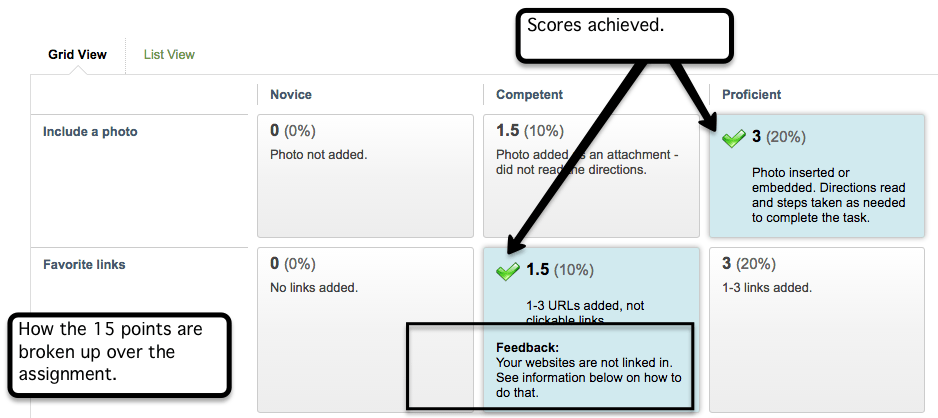 close up view of Blackboard rubric showing scores and feedback